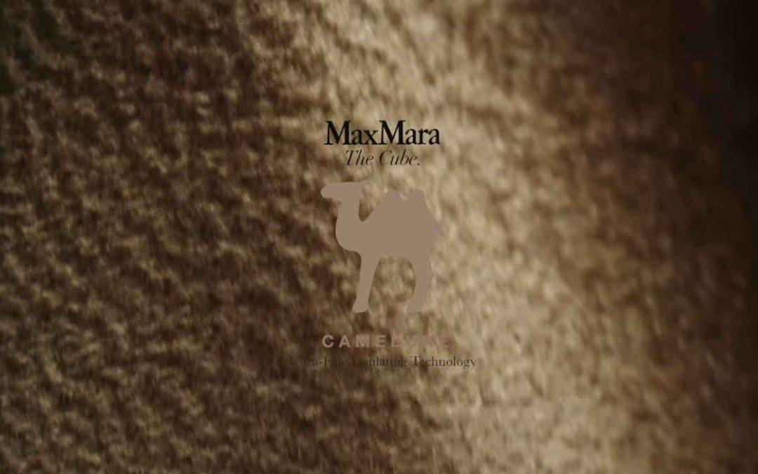 MaxMara Camelux 2020 campaign